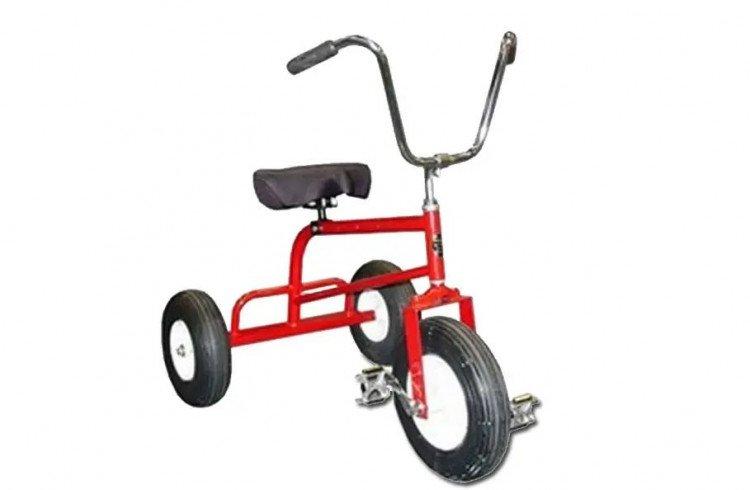 Adult Trikes (3)